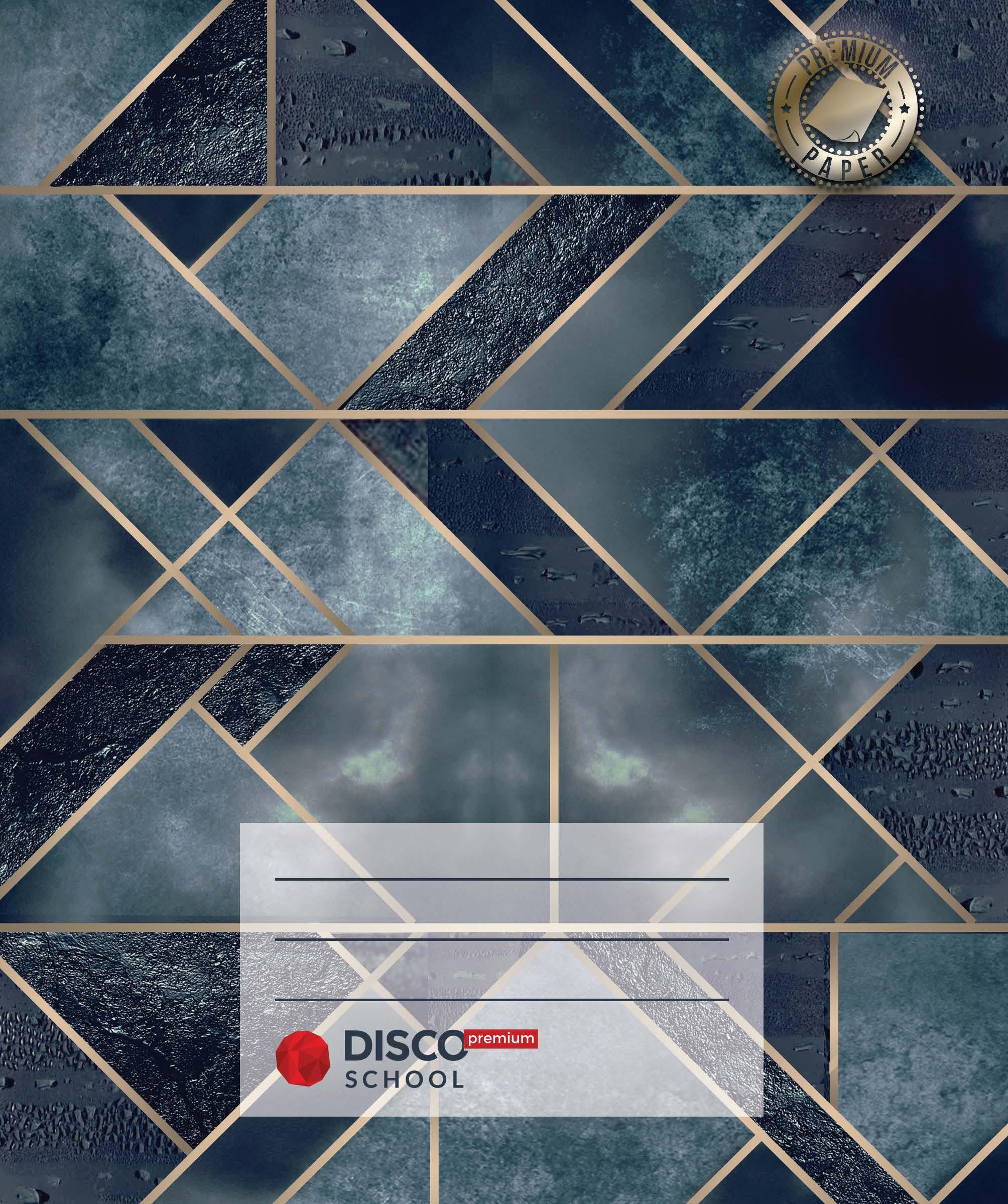 Disco Premium School